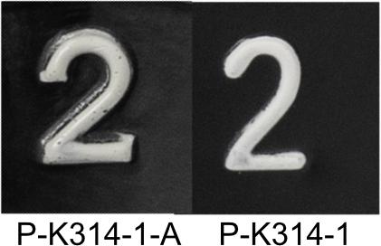 Knob Detail Comparison