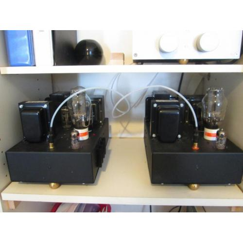 "Customer image:<br/>""My home brew SE amps."""