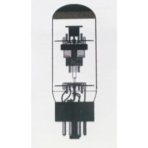 """Tattoo - The """"Tattube"""" 6L6 Vacuum Tube"""