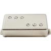 Pickup - McNelly, Stagger Swagger, Bridge, Nickel image 1
